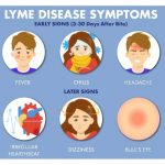 Lyme-Disease-Symptoms